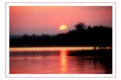 Natur_Tanja_Stiebing_-_Fotografin-060