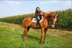 Tanja-Stiebing-Fotografin-Pferde-007