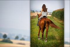 Tanja-Stiebing-Fotografin-Pferde-009